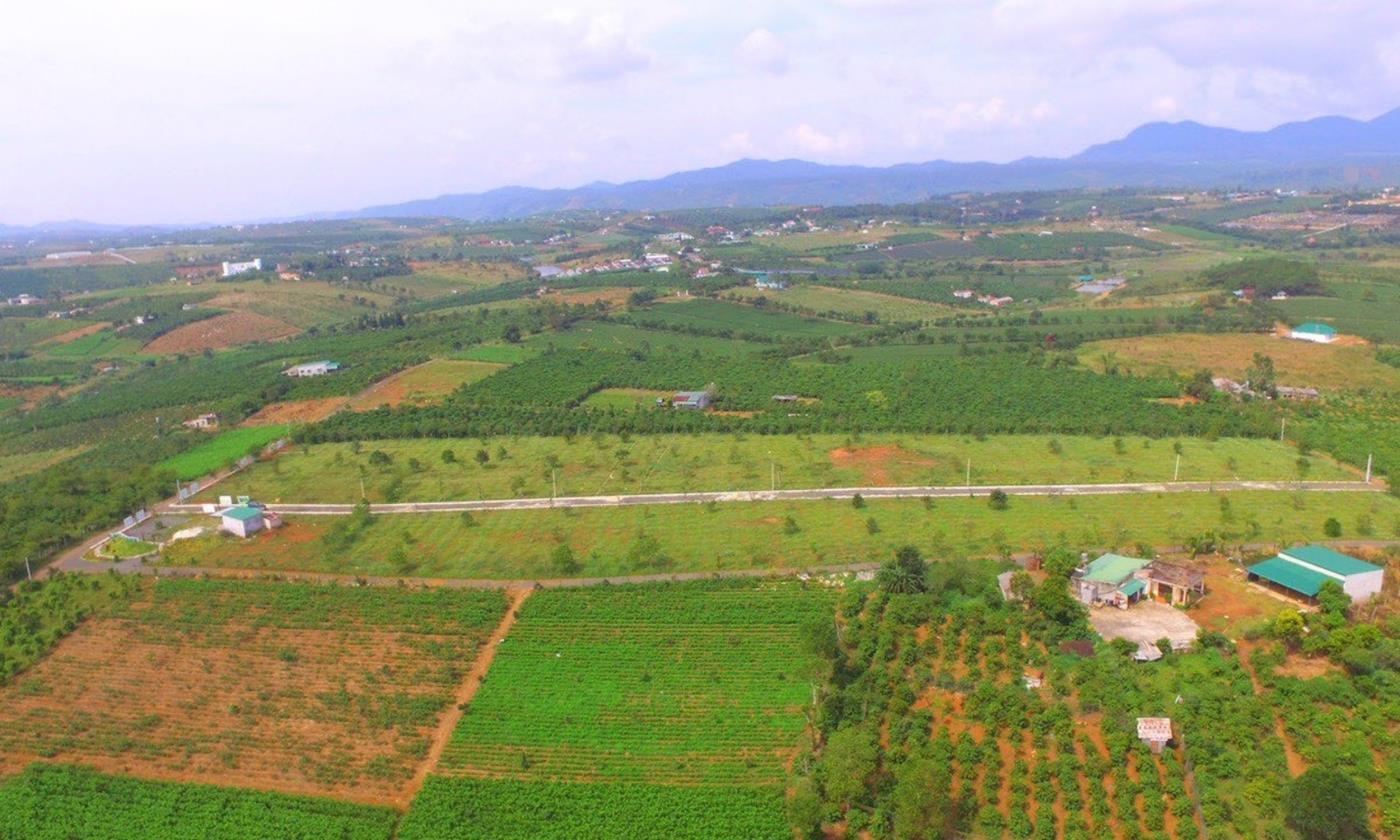 Vị trí hướng về cảnh quan thoáng mát và đặc trưng của vùng núi Bảo Lộc
