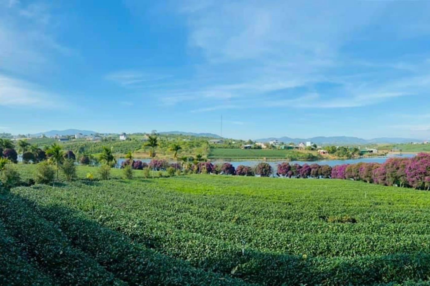 Tiềm năng du lịch từ thành phố Bảo Lộc
